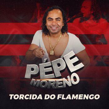 Torcida do Flamengo - Xote cover
