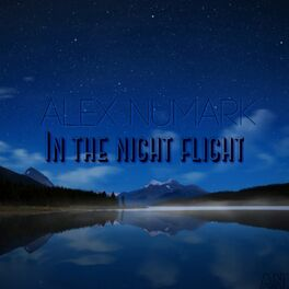 Album cover of In The Night Flight