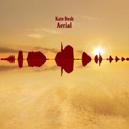 Album cover of Aerial