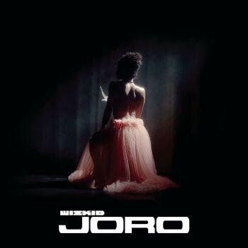 Joro cover