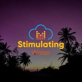 Album cover of # 1 Album: Stimulating Water