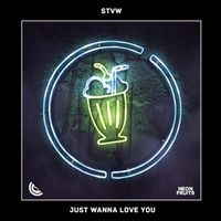 Just Wanna Love You - STVW
