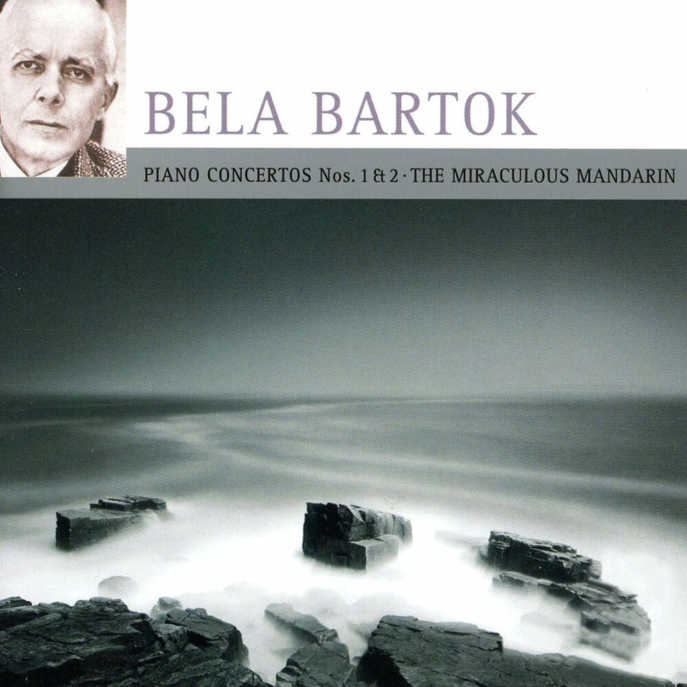 Piano Concerto No. 2, BB. 101: I. Allegro