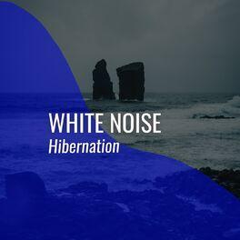 Album cover of # White Noise Hibernation