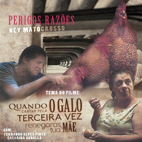 Baixar Música Perigos Razões – Ney Matogrosso (2017) Grátis