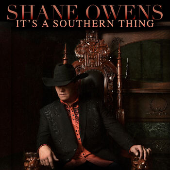 It's a Southern Thing cover