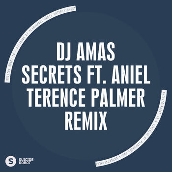 Secrets feat Aniel (Terence Palmer Remix) cover