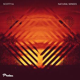 Album cover of Natural Senses