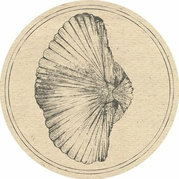 Billingsella cover