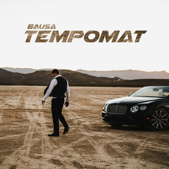 Tempomat cover