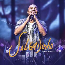 Salgadinho – Minha Verdade (Ao Vivo) 2016 CD Completo