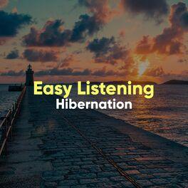 Album cover of # 1 Album: Easy Listening Hibernation