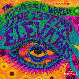 The 13th Floor Elevators - You're Gonna