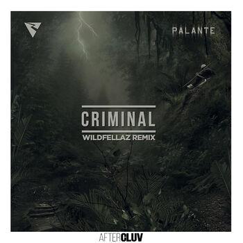 Criminal cover