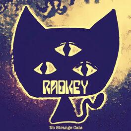 Album cover of No Strange Cats