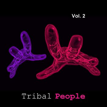 Tribal Soul cover