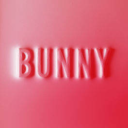 Album cover of Bunny