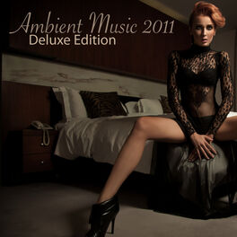 Album cover of Ambient Music 2011 - Deluxe Edition