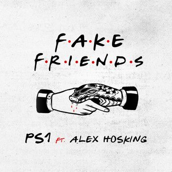 Fake Friends cover
