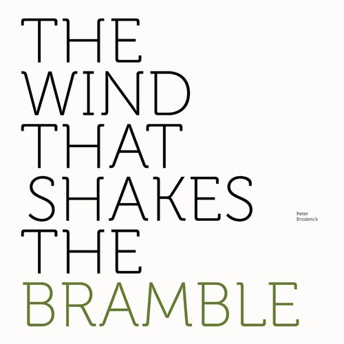 Peter Broderick - The Wind That Shakes the Bramble [MP3 320 KBS] [2021]