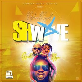 Album cover of Shwave