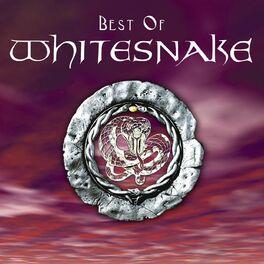 Album cover of Best of Whitesnake
