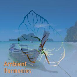 Album cover of # 1 Album: Ambient Harmonies