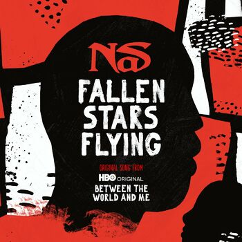 Fallen Stars Flying cover