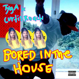 Album cover of Bored In The House