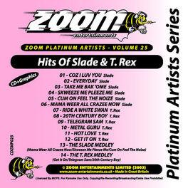 Album cover of Zoom Platinum Artists - Volume 25