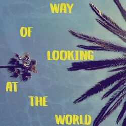 Way of Looking at the World
