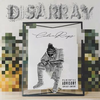 Disarray cover