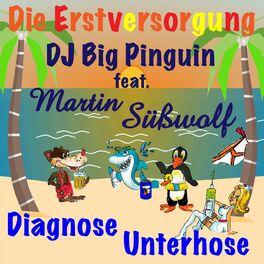 Album cover of Diagnose Unterhose (feat. Martin Süßwolf)