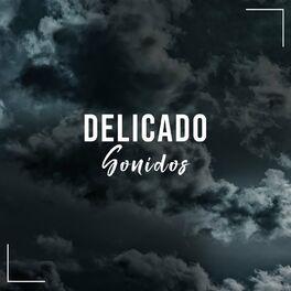 Album cover of # 1 Album: Delicado Sonidos