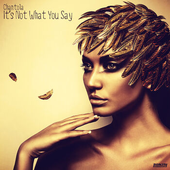 It's Not What You Say (Original Mix) cover