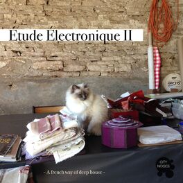 Album cover of Etude Electronique II - A French Way of Deep House