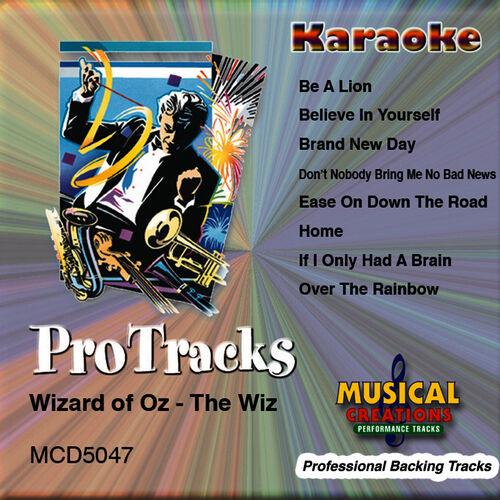 Musical Creations Studio Musicians (Karaoke) - Don't Nobody Bring Me