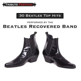 Album cover of 30 Beatles Top Hits