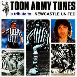 Album cover of Toon Army Tunes