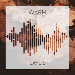 Album cover of # 1 A 2019 Album: Warm Playlist
