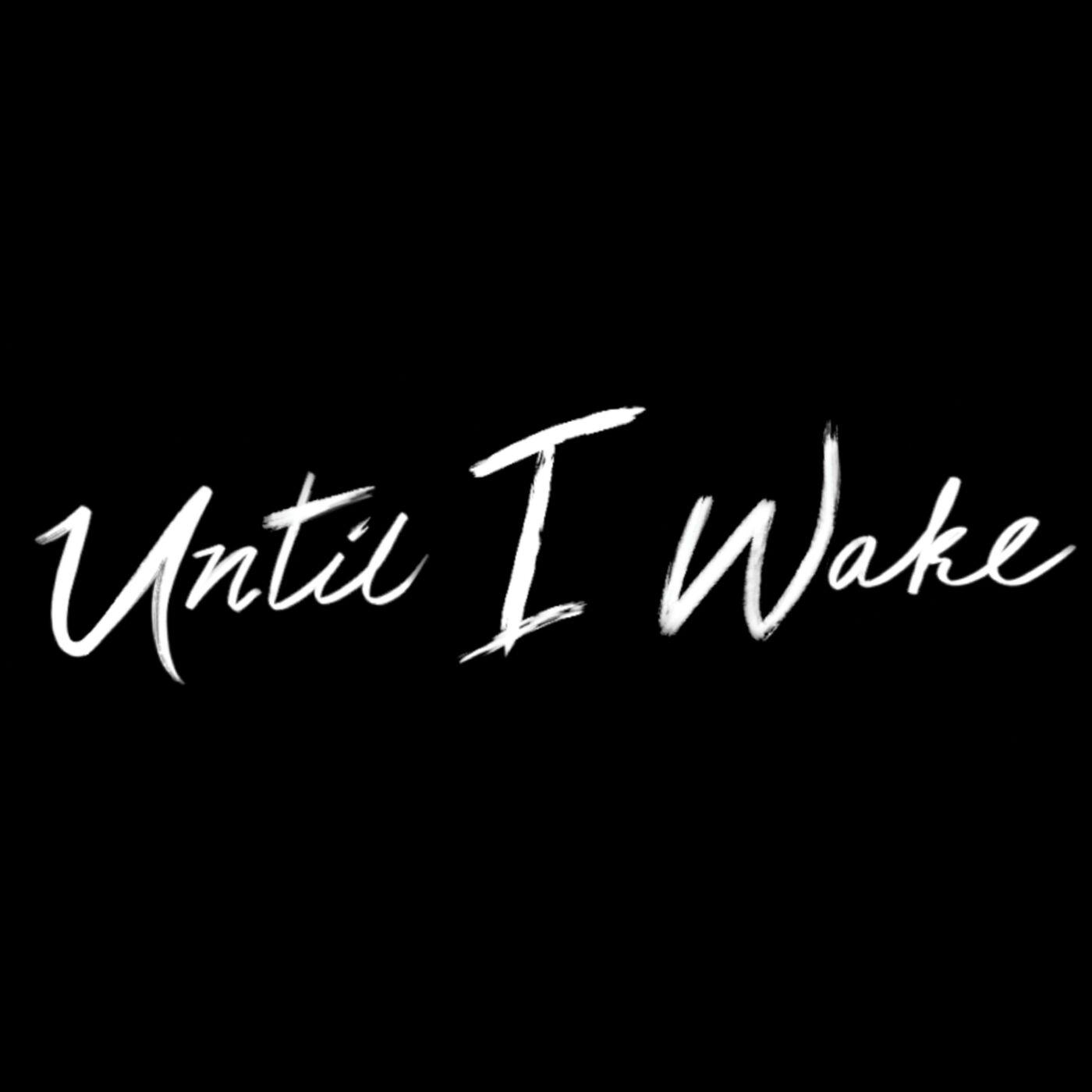 Until I Wake - Sinking Under [single] (2020)