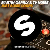 Just Some Loops - MARTIN GARRIX-TV NOISE