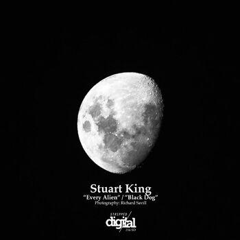 Black Dog (Original Mix] cover