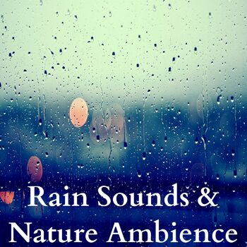 White Noise Rain cover
