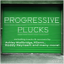 Album cover of Progressive Plucks, Vol. 2