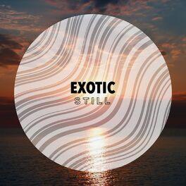 Album cover of # 1 Album: Exotic Still