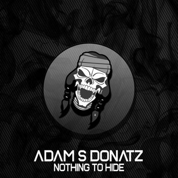 Nothing To Hide cover