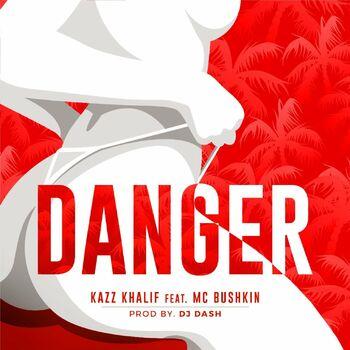 DANGER cover