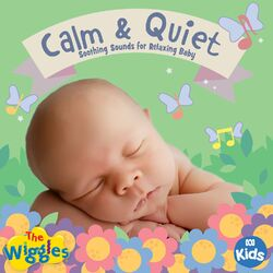 Calm & Quiet: Soothing Sounds for Relaxing Baby