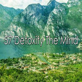Album cover of 57 Detoxify the Mind